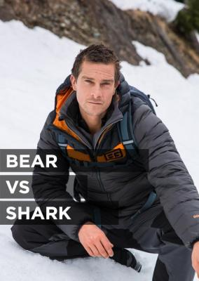 Bear vs. Shark