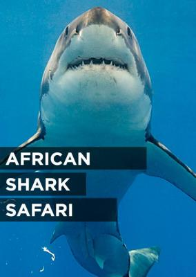 African Shark Safari